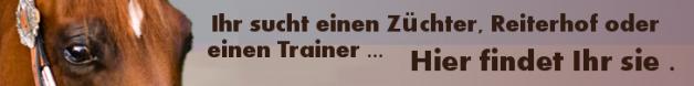 628px-PZS_Werbebanner.png